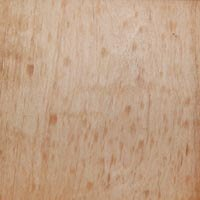 Maple Pure Tung Oil